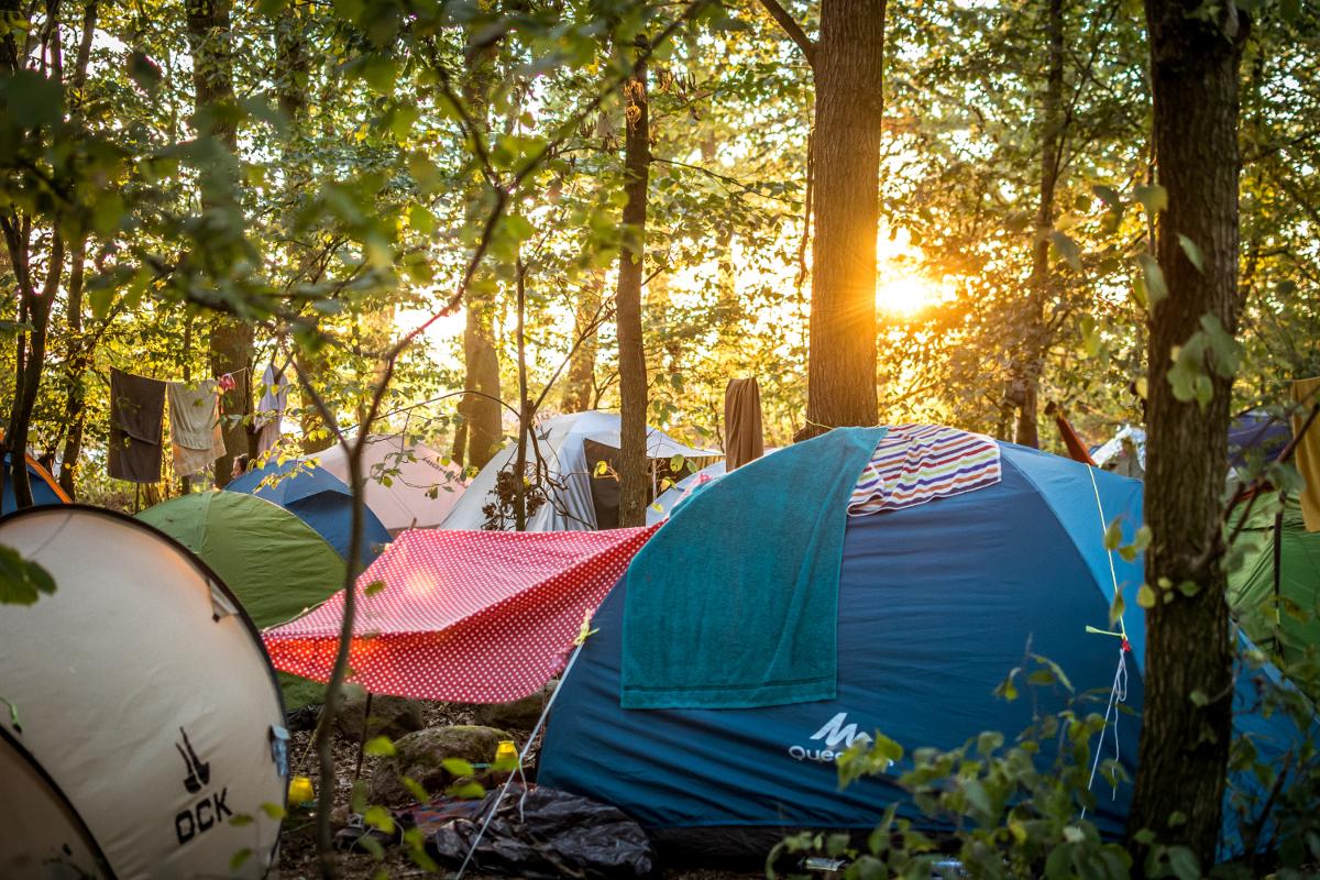 Im Hintergrund ist ein Sonnenuntergang. In einem kleinen Baumhain stehen ein paar Zelte.